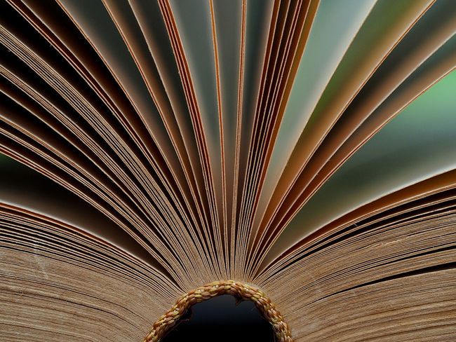Open old book pages, soft focus and vintage color tone process for education concept Vintage Style Arch Book Bookpage Ceiling Day Details Textures And Shapes Indoors  No People Old Books Paper Pattern