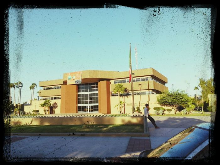 mi alma mater