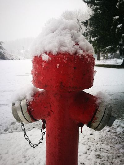 Like A Man Hydrant Like A Man Hydrant Snow Red Cold Temperature Winter Weather Outdoors Water No People Day Nature Close-up