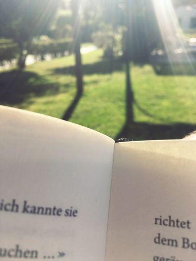 Reading Sun