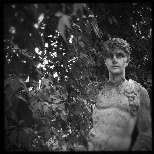 Portrait_tuesday_nonchallenge Secret Garden Bnw_collection