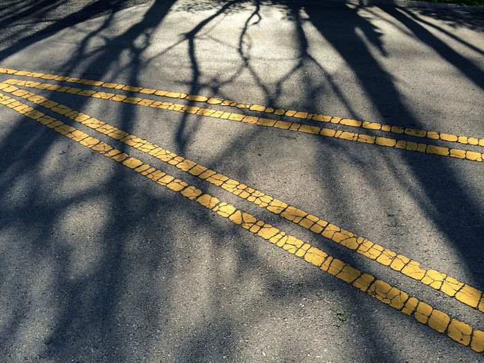 the road divided splits here but finds its path covered with the day's end. Asphalt Cracked Day Gray Here Belongs To Me High Angle View Intersecting Lines Intersection Mesh Outdoors Pattern Reaching Road Shadow Silhouette Street Sunlight Surface Textured  V Web Yellow Yellow Flower