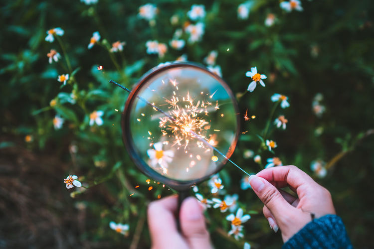 Cropped Hands Holding Lit Sparkler And Magnifying Glass Against Plants