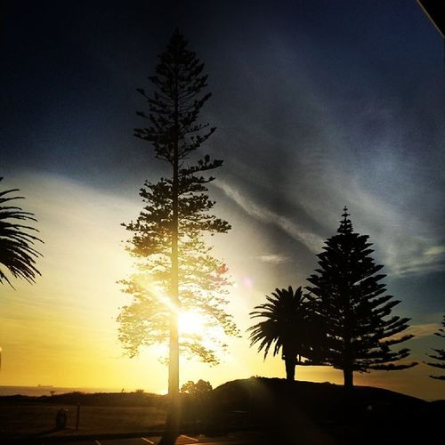 Sleptin but it's hard to care when you wake up to this Goodmorning Mtmaunganui Sunrise