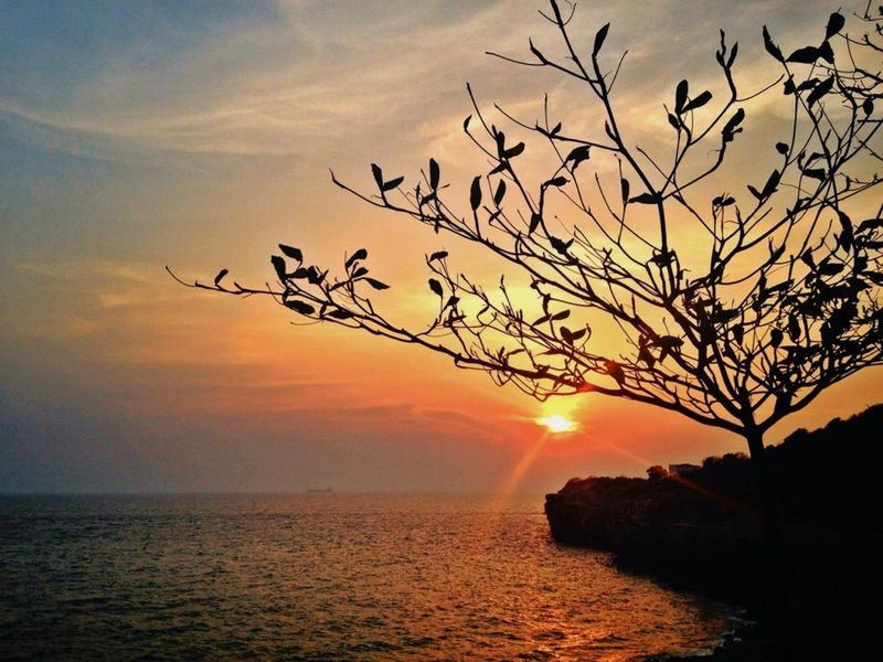 My body, mind and soul whisper that they wanna travel. Sunset Sun Sea Sky Tree Sky Collector1 Beauty In Nature Travel Sri Chang Island Chonburi, Thailand Vajiravudh Bridge
