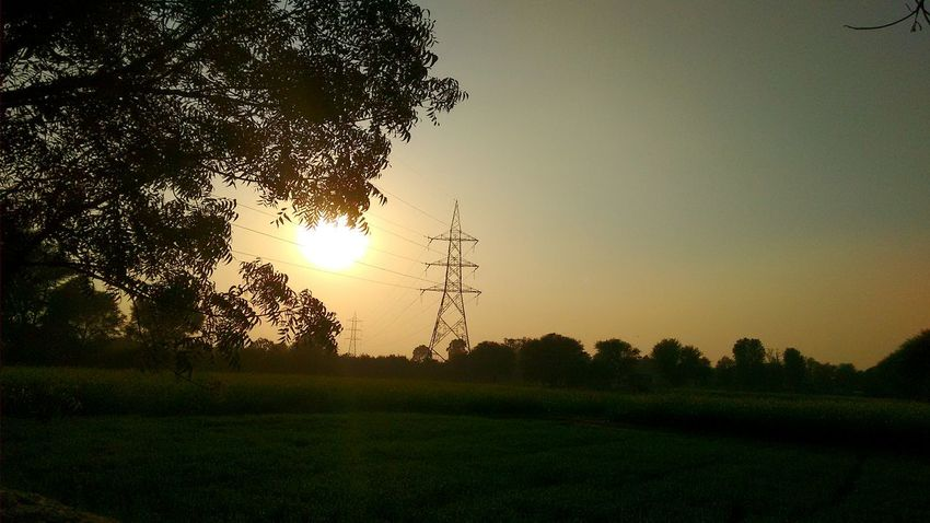 How Do We Build The World? Electricity  Electricity Pylon Electric Lines Fieldscape Field Tree Electric Power From My Polnt Of View Silhouettes Nopeople Evening Time Pylons And Power Lines Power Line