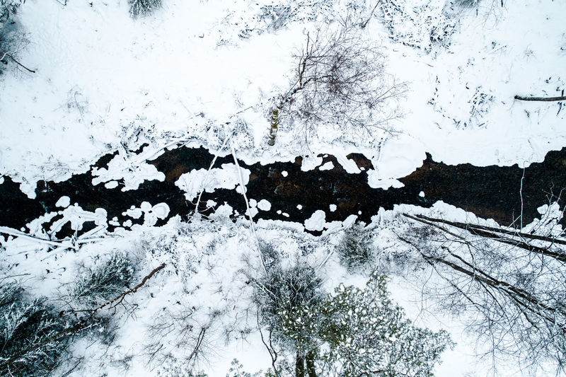Lithuania Baltic Winter Winter Wonderland Aerial View Aerial Aerial Landscape Snow Cold White Wild Landscape Forest Woods River Above Spring LINE Cold Temperature White Color Covering Tranquility No People Nature Frozen