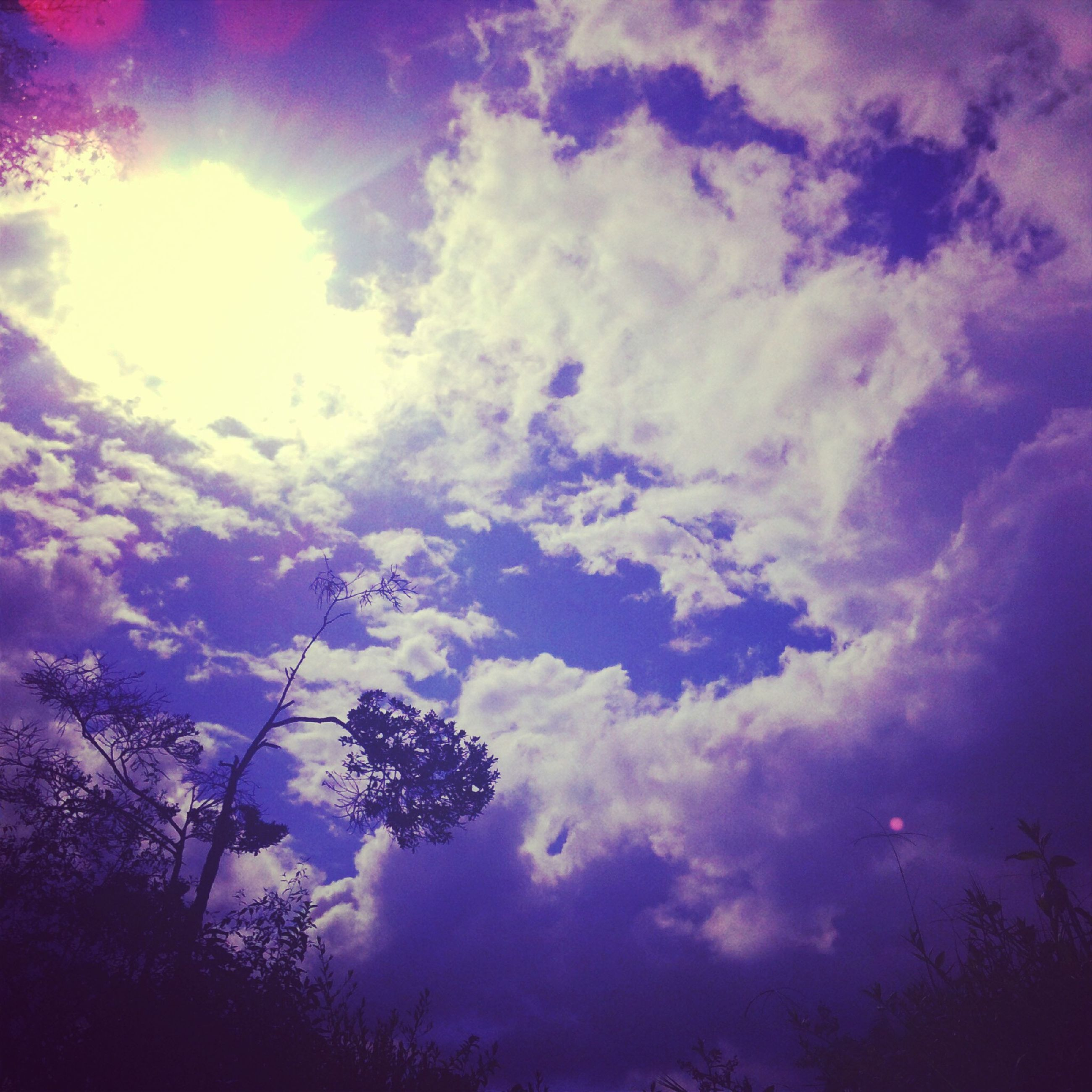 low angle view, sky, sun, tree, sunbeam, beauty in nature, cloud - sky, silhouette, nature, tranquility, sunlight, lens flare, growth, scenics, tranquil scene, blue, cloud, outdoors, cloudy, no people