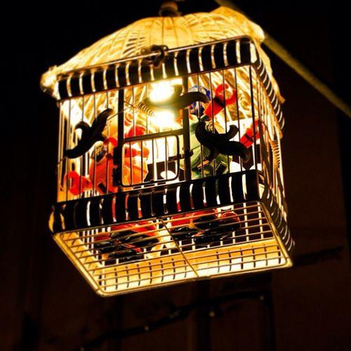 燈 Hk Hkig Light lamp hkshop 禮物 igstore 台北 led 852 台灣 hkseller fashion 情人節 hkstores 852girls hkigshop igshop 創意
