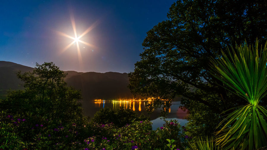 Loch  Scotland Beauty In Nature Flower Growth Illuminated Lens Flare Loch Earn Moon Nature Night No People Outdoors Plant Reflection Scenics - Nature Sky St Fillans Tranquil Scene Tranquility Tree Water