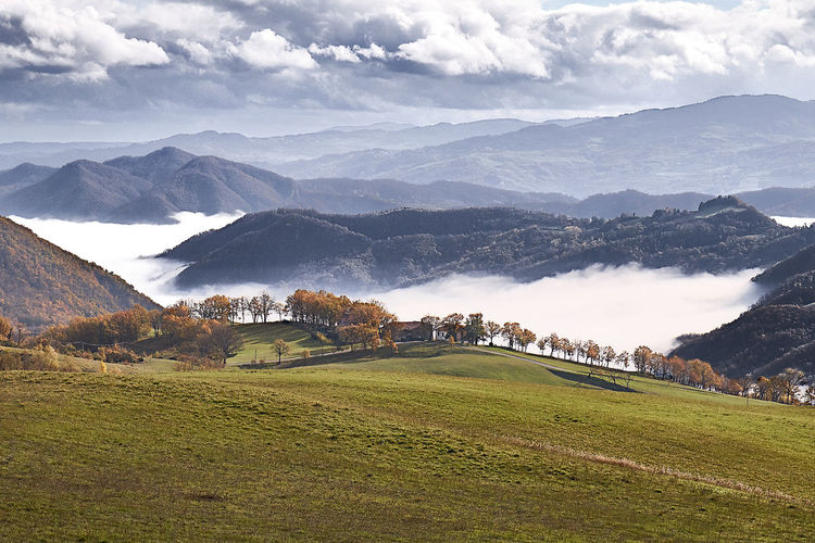 La nebbia agli irti colli... Autumn Cloud Italia Panorama Alberi Autunno  Fog Italy Landscape Nature Nebbia No People Paesaggio Sky Skyporn Tranquil Scene