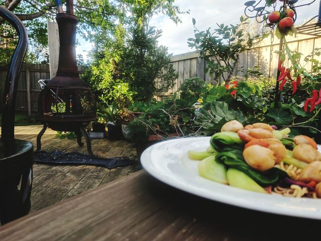 Outdoors Table Plate Day Food Flower Freshness Healthy Eating Close-up Seafoods Seafood Yum:)