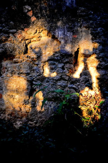 Nature Burning No People Heat - Temperature Plant Outdoors Growth Glowing Rock Illuminated Close-up Full Frame Backgrounds Orange Color Shadow Light Sunlight Sunlight And Shadow Silhouette Rock Rock Formation Abstract Abstract Backgrounds My Best Photo