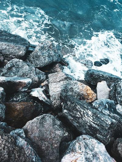 Sea 🌊 Taking