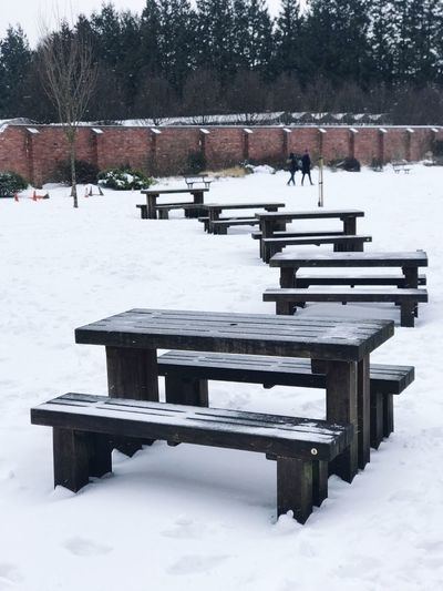 Bench Snow Winter Cold Temperature Weather Nature Day Park - Man Made Space Tranquility Seat
