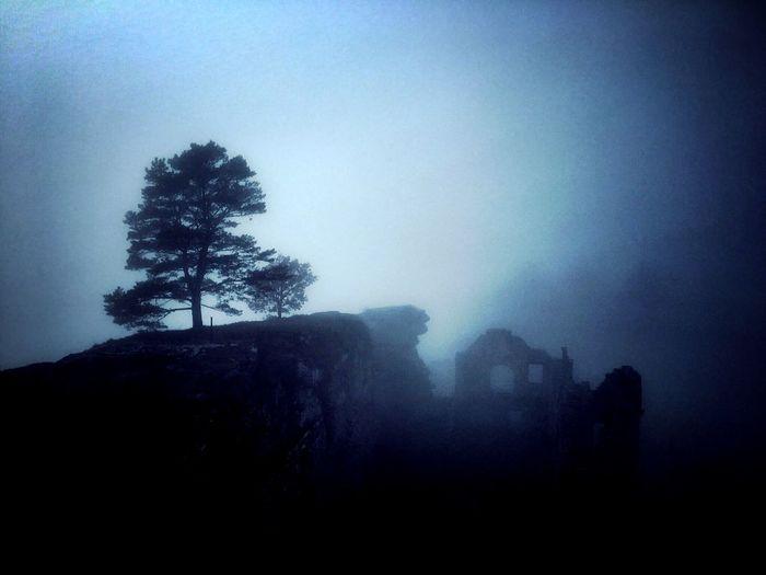 Taking Photos Pfalz Fog EyeEm Best Shots Ruins My Best Photo 2015 Germany Nebel Landscape_photography Silhouette Ruine Neuscharfeneck Neuscharfeneck