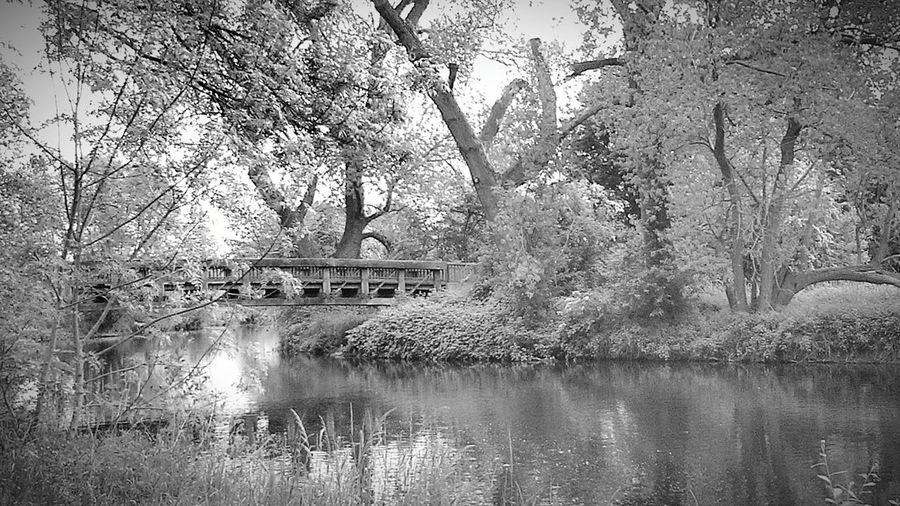 Leine In Lower Saxony Wooden Bridge Wooden Bridges Old Wooden Bridge Riverside Riverbank Riverside View Wonderful Scenery River View River Collection B&w Nature B&w Edit Beautiful Landscape Ladyphotographerofthemonth Beautiful Nature, Countryside within a town, Lower Saxony Landscape Picturesque Beliebte Fotos Beautiful Scenery Showcase: May Learn & Shoot: Composition The Great Outdoors - 2016 EyeEm Awards