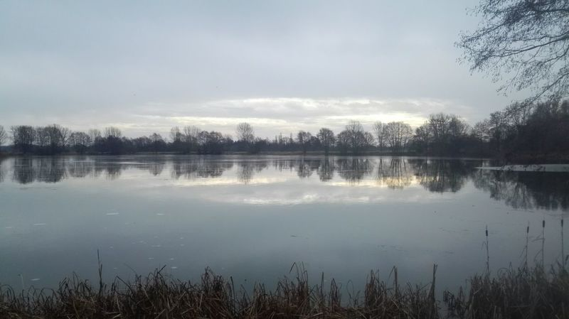 Ruhe vor dem Sturm Morning Sky Lake View Lake Grey Sky Nature Langenhagen