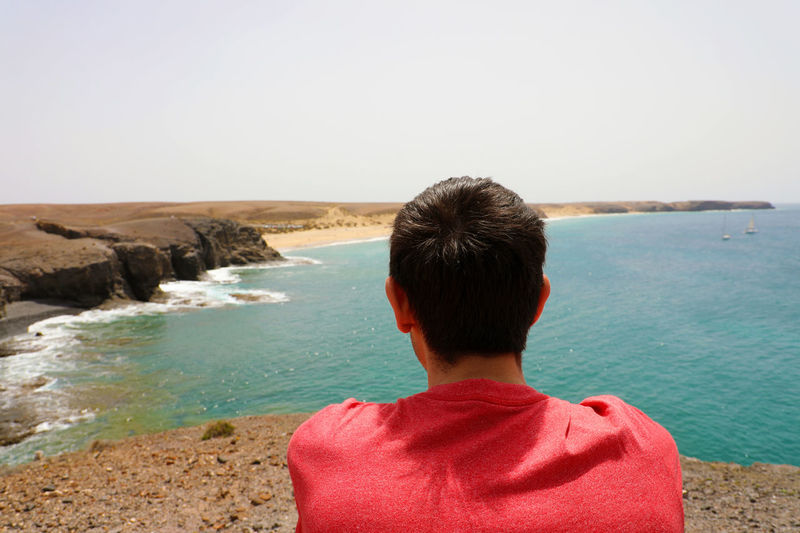 Rear View Of Man Looking At Sea Against Clear Sky