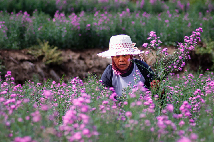 Woman looking away by pink flowering plants