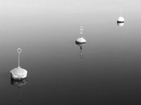 Reflection No People Outdoors Day Buoy Buoys Buoy On The Water Reflection_collection Maritime Maritime Photography Blackandwhite Black & White Monochrome Travel Photography Simplicity Symmetric Rostocker Stadthafen