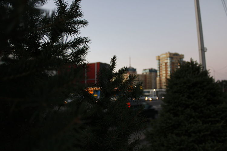 Trees and buildings in city against clear sky