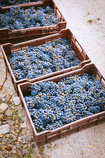 High Angle View Of Grapes In Crates
