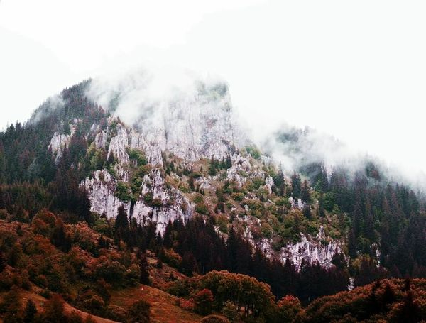 Nature No People Mountain Beauty In Nature Outdoors Mountainscalling Rhodopemountains Rhodopes Bulgariannature Easterneurope Noescape Balkans The Great Outdoors - 2018 EyeEm Awards