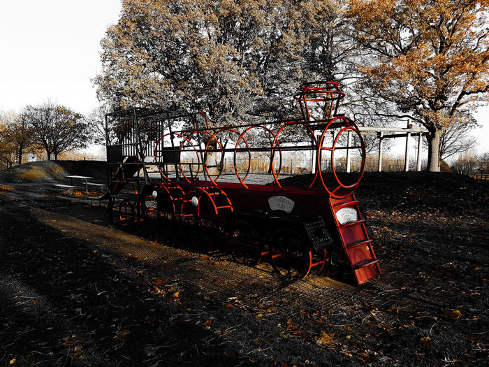 Choo Choo. Outdoors Day No People Abstract Ayeshea Bah Outdoor Photography EyeEm Gallery Fresh On Eyeem  Park Life Autumn🍁🍁🍁 Textured  Barriers Grass Freshness Shining Bright Yellow Leaves Light Shadows Train Playground Metal Structure Red Autumn Colours