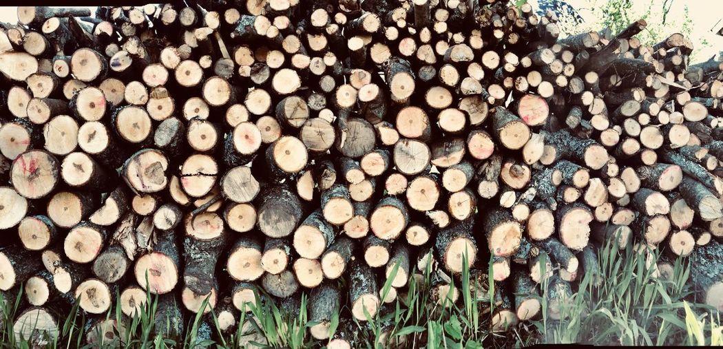 Wood pile Timber Wood Log Firewood Wood - Material Lumber Industry Stack Arrangement Woodpile
