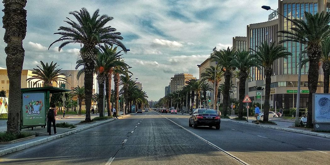 an other typical picture to the Mohammed V street ❤️ Tree City Road Land Vehicle Car Sky Architecture Building Exterior Built Structure Cloud - Sky Double Yellow Line Road Marking Dividing Line Asphalt Two Lane Highway vanishing point Palm Tree Car Point Of View Highway EyeEmNewHere