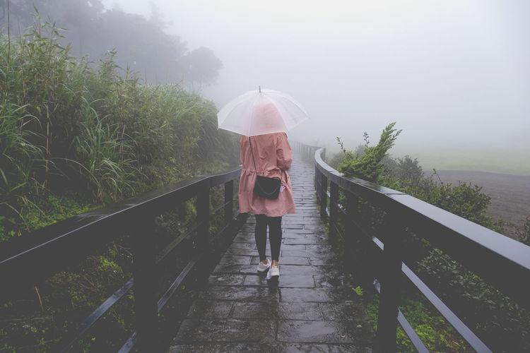 Rear view of woman with umbrella standing on footbridge during rainy season