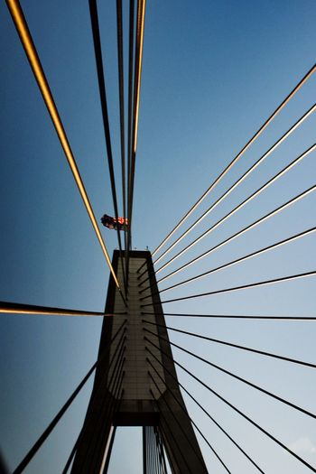 Looking up EyeEm Selects Sky Cable Architecture Built Structure Bridge Low Angle View Bridge - Man Made Structure Suspension Bridge Clear Sky Engineering Connection Blue Steel Cable Cable-stayed Bridge Tall - High Metal Transportation Day Outdoors