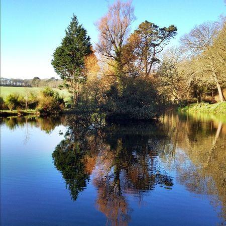 Reflections Reflection Water Improvedimage