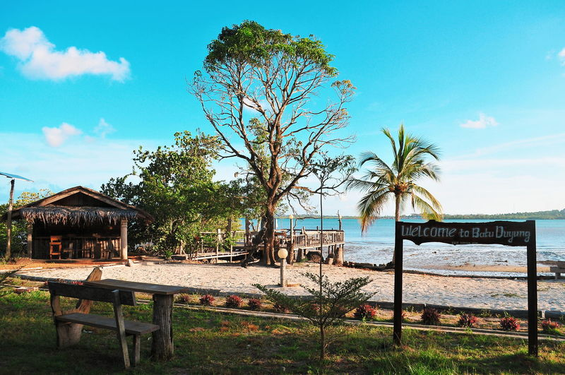 Bintan  Treveling Tropical Paradise Tropical Climate Bintanisland INDONESIA Travel Destinations Illustration Destination Tree Sea Oil Pump Water Beach Protection Sky Horizon Over Water Grass Cloud - Sky Tranquility Idyllic Scenics Countryside Beauty In Nature Lakeside
