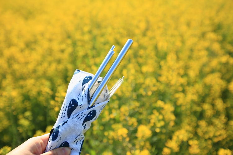 Person holding umbrella against yellow flowering plants