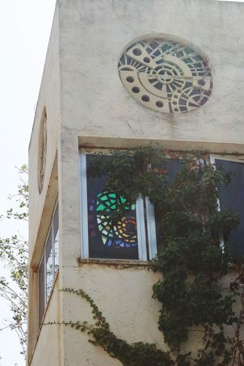 Eye4photography  Built Structure Architecture Building Exterior Building Low Angle View No People Art And Craft Wall - Building Feature Day Window Plant Creativity Nature Decoration Ornate