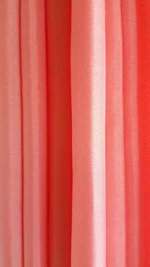 Full frame shot of coral curtain
