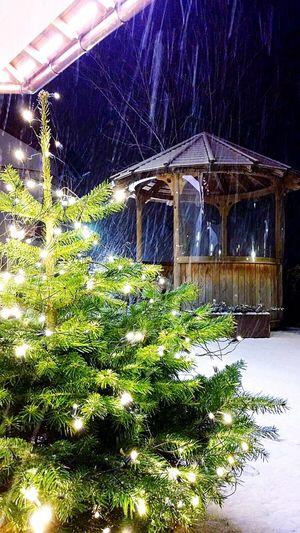 Selvavalgardena Valgardena Snow Firstphoto2016 Mountain Christmas Tree Christmas Lights Holiday It's Cold Outside