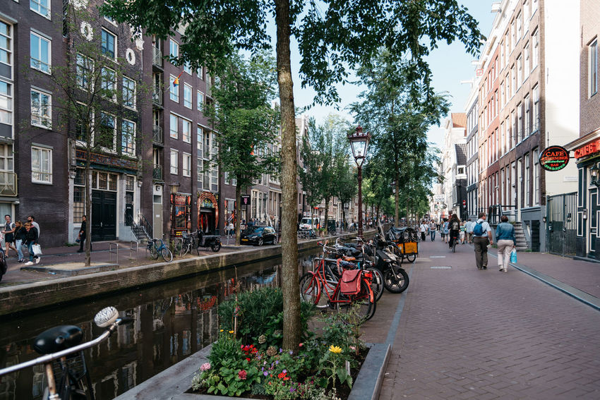 Amsterdam street scene. Red light District in Amsterdam Adult Adults Only Amsterdam Architecture Bicycle Canals City City Life City Life Cityscape Cityscapes Day Land Vehicle Mode Of Transport Outdoors People Prostitution Red Light District Street Street Life Travel Destinations Tree