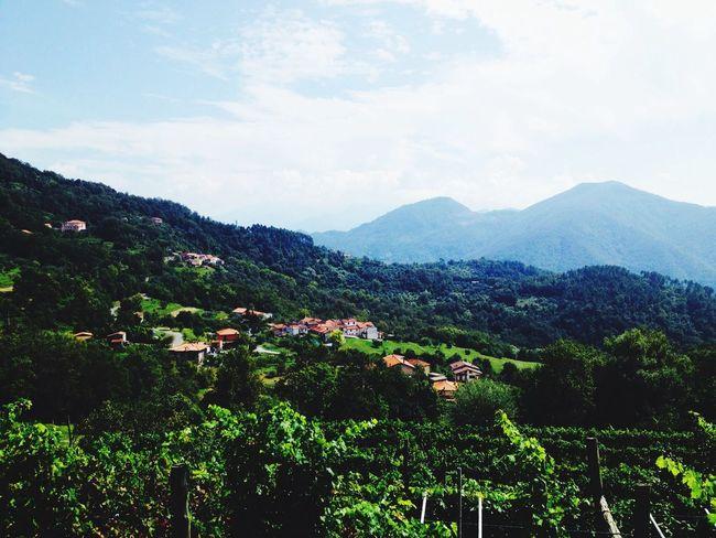 Look Up And Thrive Podenzana mountain and sea italy (tuscany)