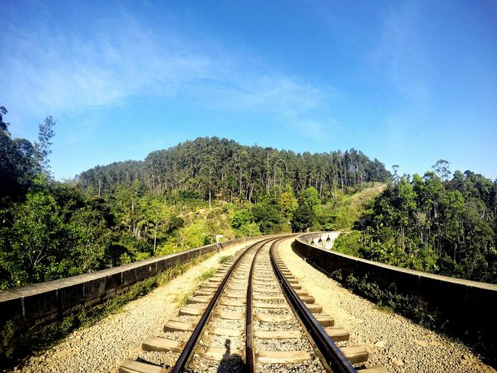 Railroad tracks amidst trees in forest against sky