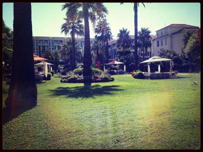 Garden Enjoying The Sun Holiday Hotel