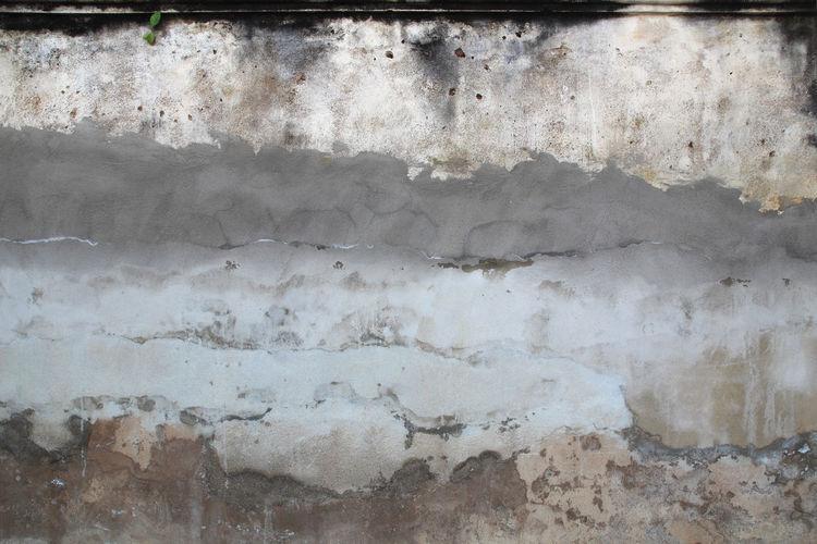 Photo of grey