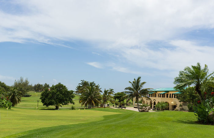 Golf place in Varadero Cuba Golf Golf Course Palms Parkour Place Of Worship Tee Architecture Beauty In Nature Day Grass Green Color Growth Lawn Links Nature No People Outdoors Palm Tree Play Playing Sky Sport Summer Sward Tree