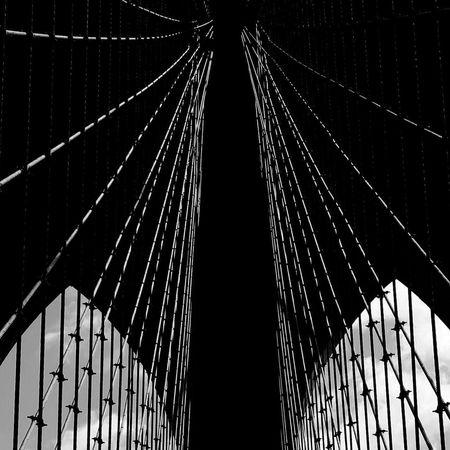 Maximum Closeness Brooklynbridge Brooklyn Bridge / New York Brooklyn Bridge  Brooklyn Ny Travel Destinations First Eyeem Photo