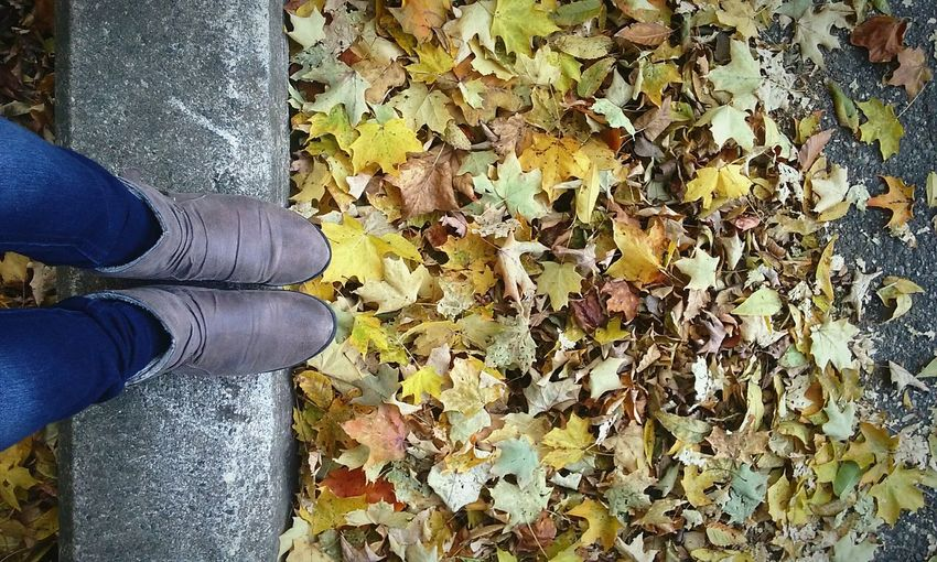 Smells like fall Autumn Low Section Real People Leaf Change One Person Standing Person Day Nature Outdoors Beauty In Nature Horizontal
