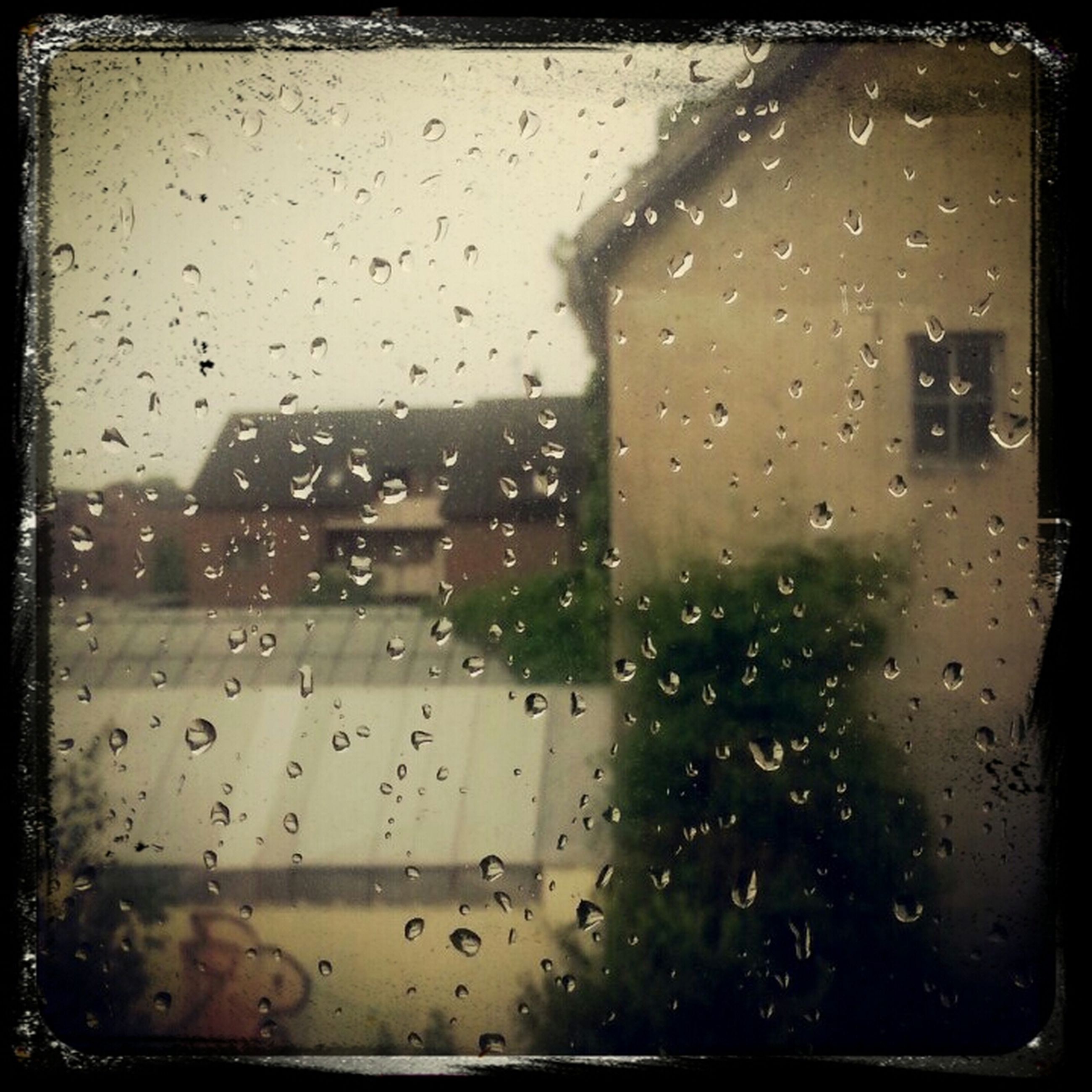window, drop, wet, rain, transparent, indoors, glass - material, weather, raindrop, building exterior, built structure, architecture, season, water, car, transportation, land vehicle, glass, vehicle interior, focus on foreground