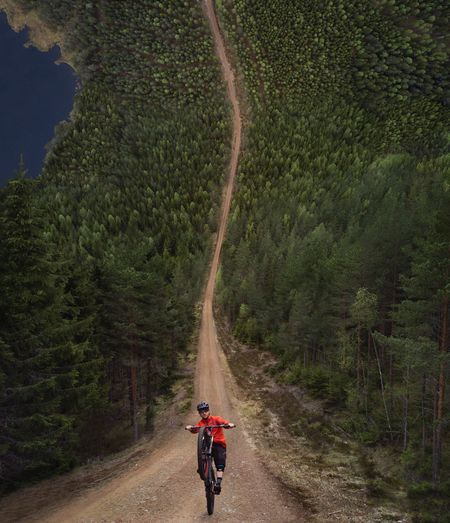 Cycling Bicycle Road Nature Forest Tree Leisure Activity Outdoors Photoshop Flatland Creative Dronephotography Drone  Dji Mavic Pro Eyemmarket Eyemphotography Eyem Best Shots Inception Perspectives On Nature Be. Ready.