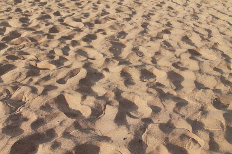 Desert Desert